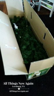 photo tree in box